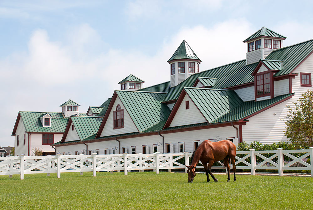 Architectural Design for Hamptons Horse Farm