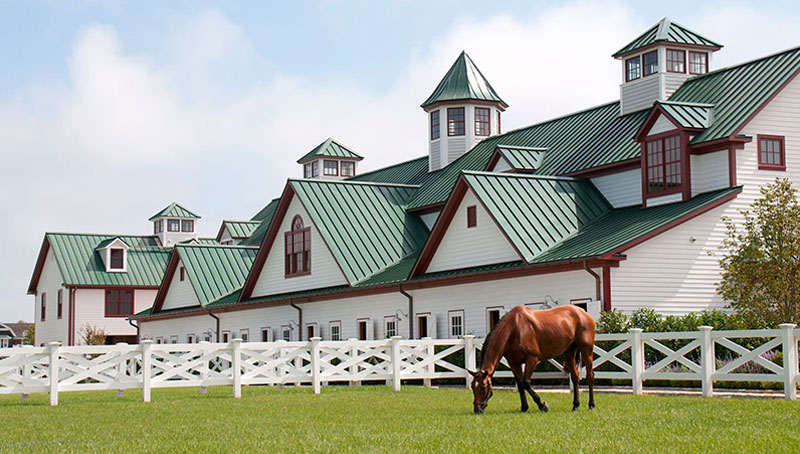 Horse Farm Commercial Architecture Design in Hamptons